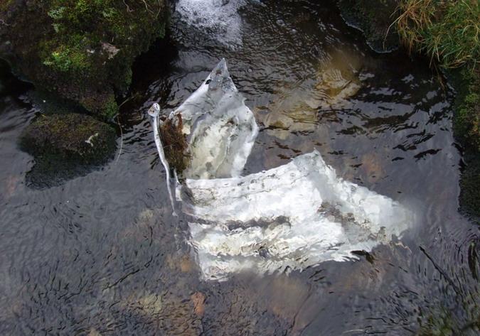 Nant Fach, Cwm Llafar - Lincoln, RF511 (further downstream at SH 67550 63925)