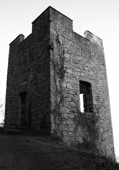 Lady Emily's Tower