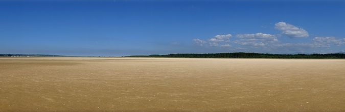 Malltraeth Sands