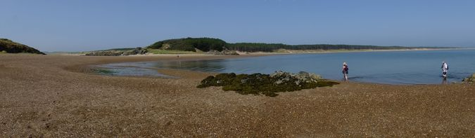 Traeth Llanddwyn and Newborough Forest