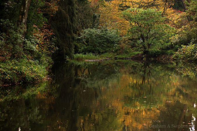 Mill pond, Afon Hiraethlyn