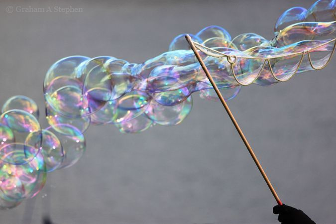 Bubbles, Plas Newydd Christmas Food and Craft Fair