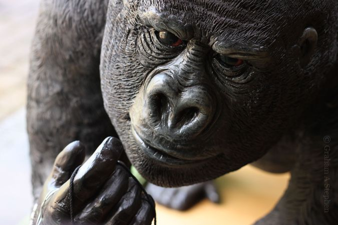 Gorilla sculpture in the café.