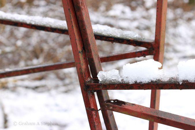 Snow V