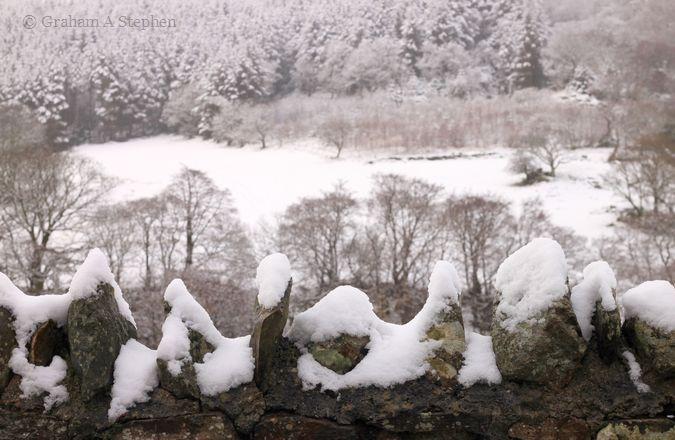 Snow VI