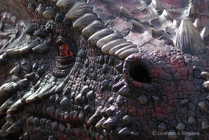 Dragon, Caernarfon