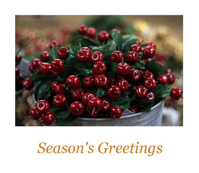 Happy Holidays and Best Wishes for the New Year!