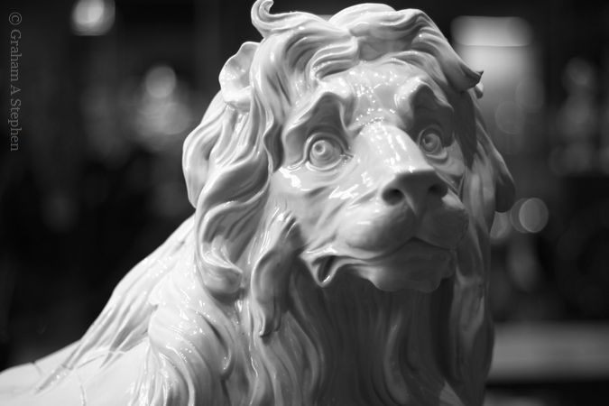 The Meissen Lion